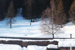 Escursioni sulla neve in Val di Sole
